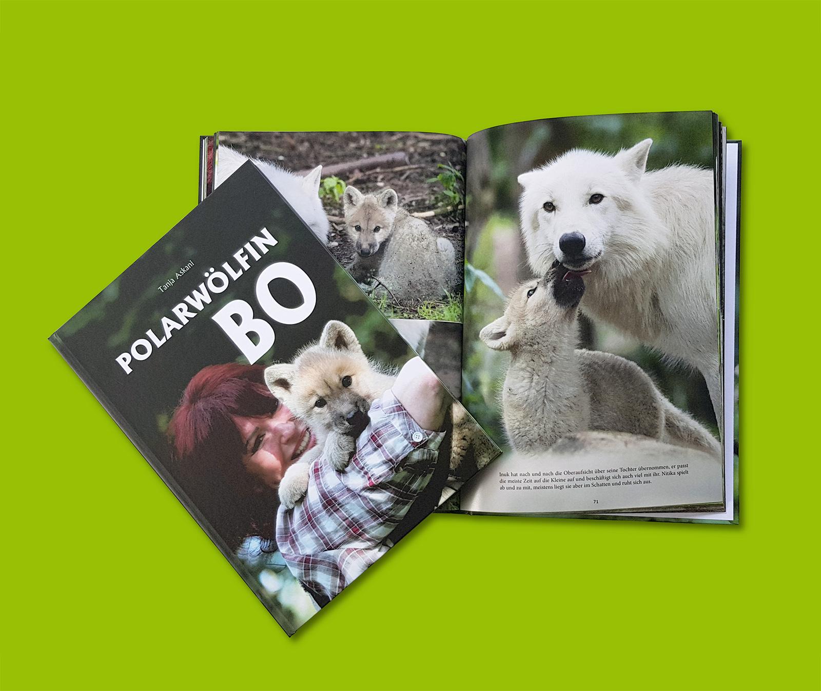 Bildband Polarwölfin Bo